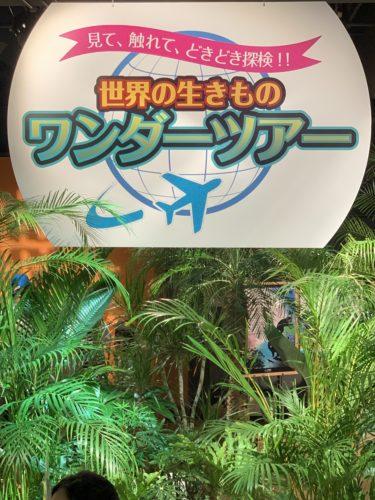 世界の生きものワンダーツアー☆